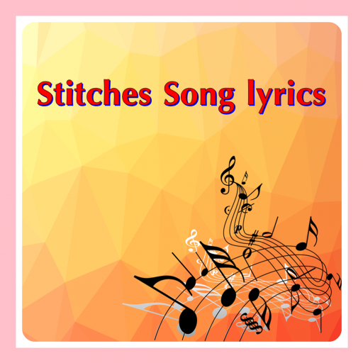 Stitches Song lyrics