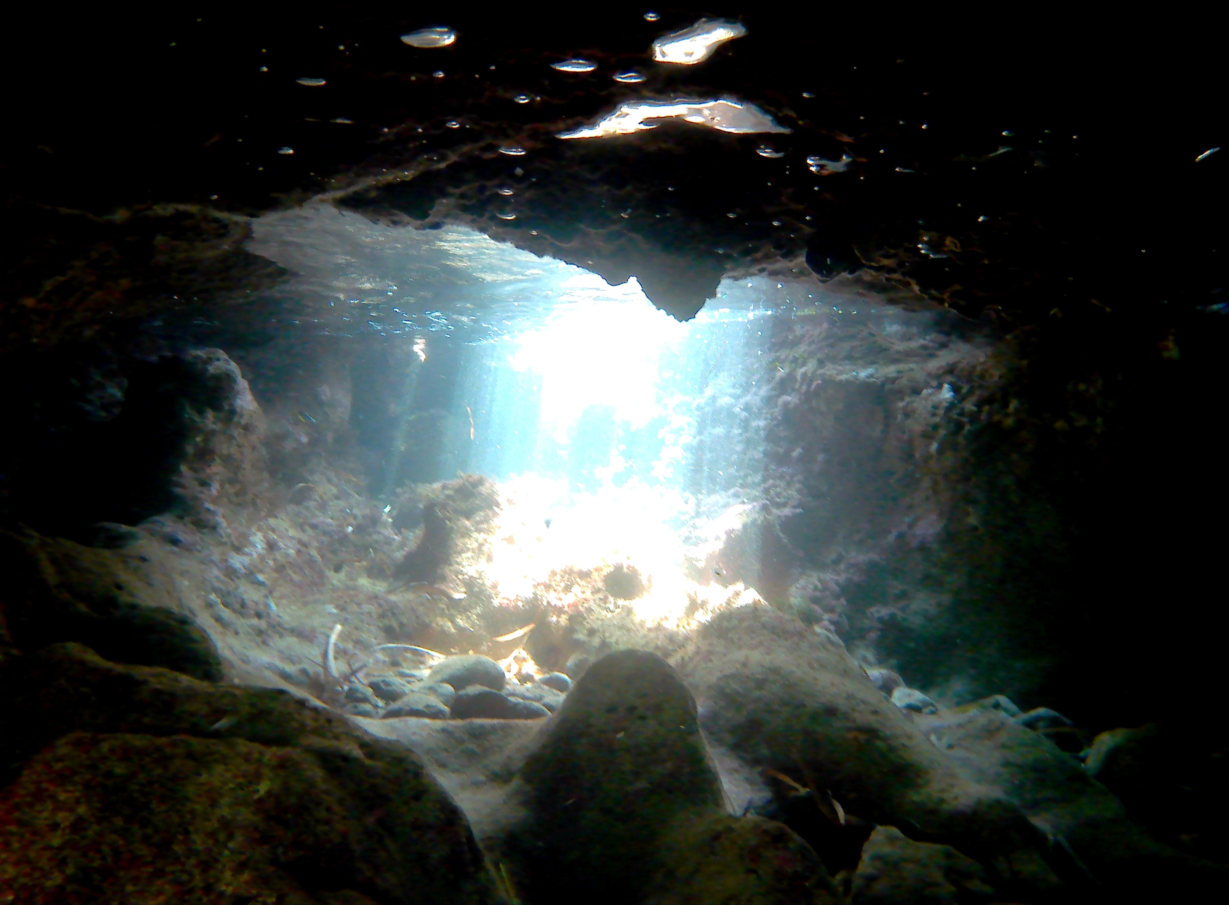 Riflessi subacquei  di emanuele_calvi