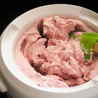 Basic Fruit Ice Cream Recipe