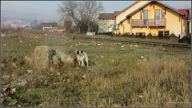 Photo: vedere in zona la str. Fabricii - 2017.12.29