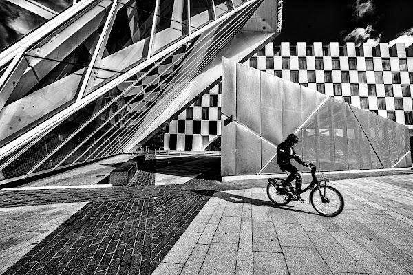 Il ciclista  di bondell