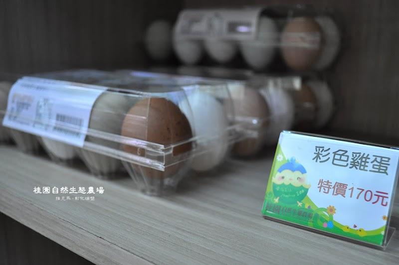 桂園自然生態農場彩色雞蛋