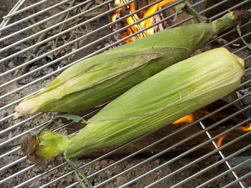 Grill-steamed Corn On The Cob Recipe