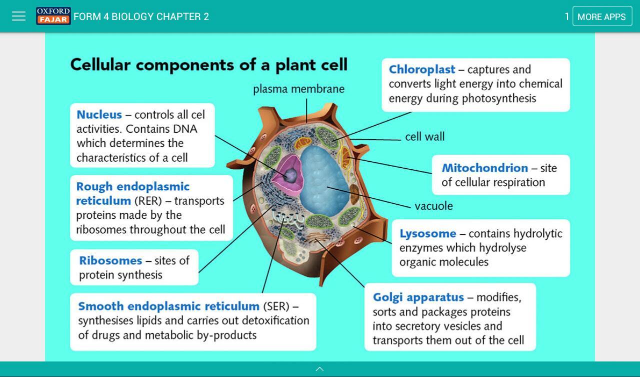 Spm biology form 4 screenshot