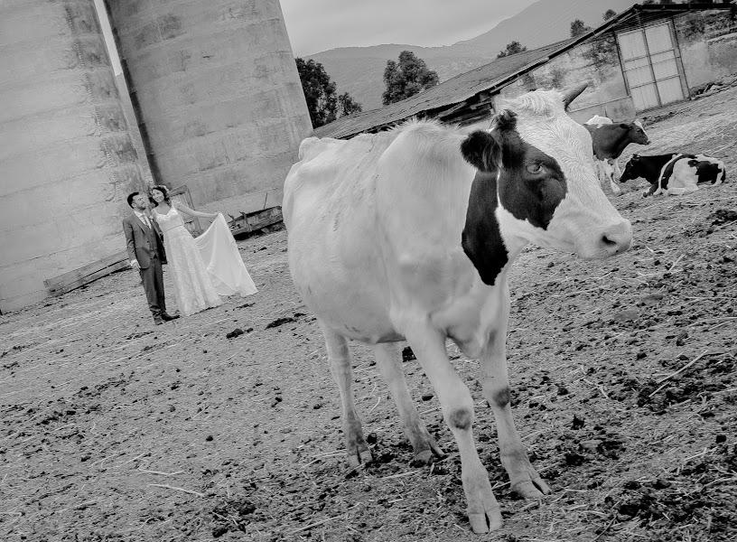 Fotógrafo de bodas Rosa Navarrete (hazfotografia). Foto del 05.12.2017