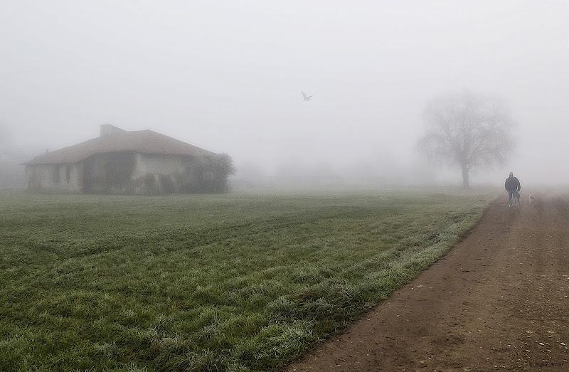 Passeggiata nella nebbia di angart71