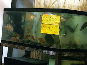 Photo: お魚も豊富で! マダイに、オナガに、アラカブなどなど!アジはうまかったー!