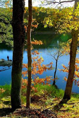 Quel giorno di Novembre.....a pesca!! di cenzino64