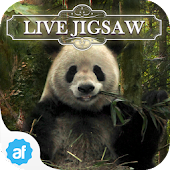 Live Jigsaws - Into the Wild