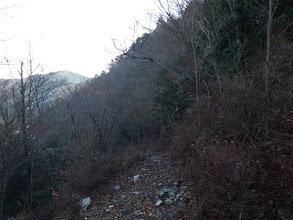 林道からの道