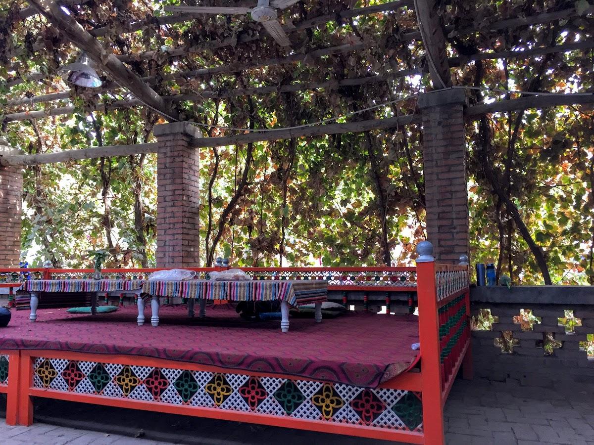 China. Xinjiang Turpan . Grape cover at the Dap Youth Hostel