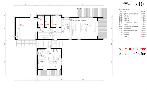 House X10 - drewno HBE - Rzut parteru