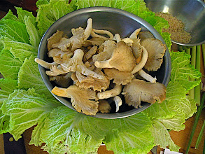 Photo: oyster mushrooms and napa cabbage
