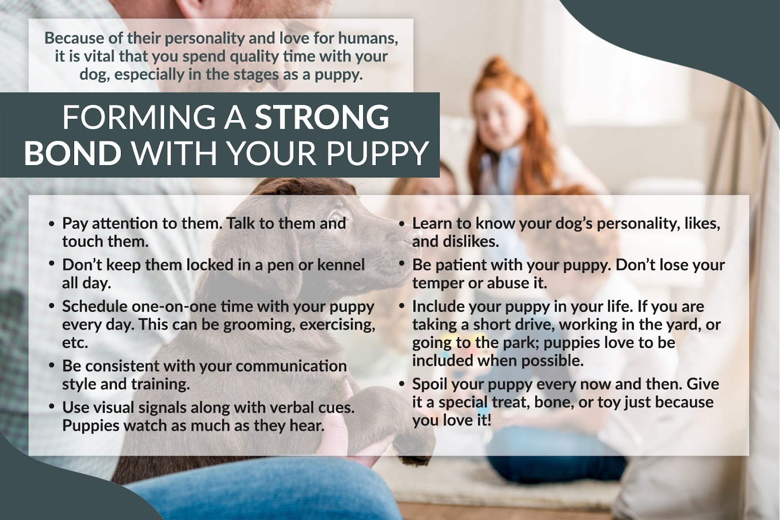forming a strong bond with your puppy