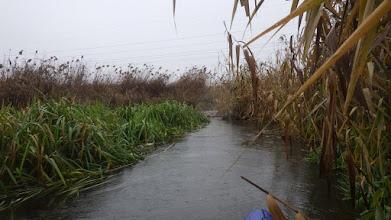 Photo: ...i już widzę Widawę, za mną 1 kilometr spływu