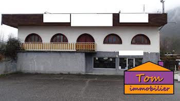 locaux professionels à Les Chavannes-en-Maurienne (73)