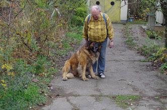 Photo: Lennox - 16.11.2013 - Letztes Foto mit seinem Herrchen, der leider verstarb