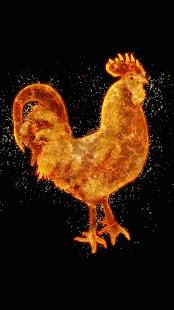 Kohout Živé Tapety ? Horoskop Tapety Na Mobil - náhled