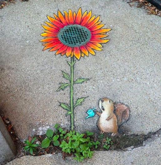 sunflower and chipmunk