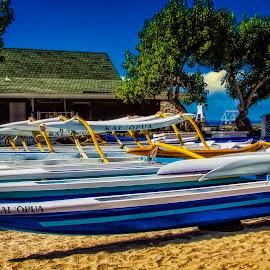 Canoes 2 by Joseph Vittek - City,  Street & Park  City Parks ( kona, sand, king kamehameha, kailua, races, hotel, palms, canoes, hawaii, clubs )