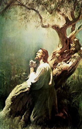Dios manda lluvia by ericson alexander molano on amazon music.