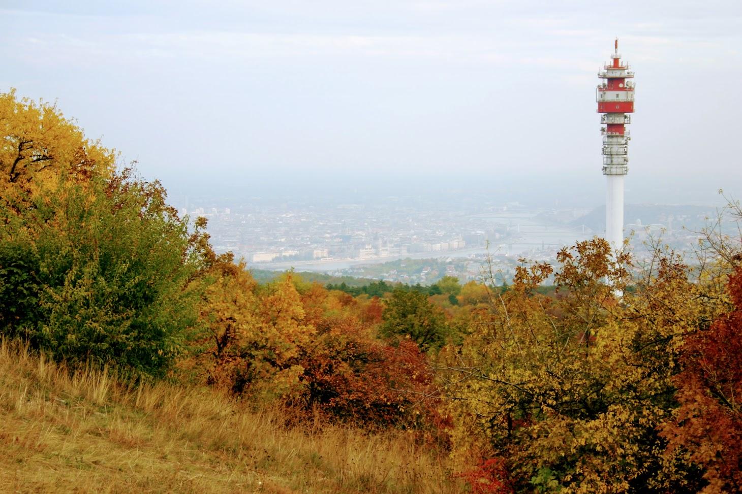Budapest/Hármashatárhegy, Felső-Kecskehegy - DVB-T/T-T-DAB+ adóállomás