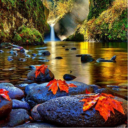 foto de Autumn Live Wallpaper Free – Applications sur Google Play