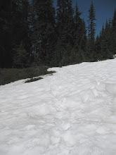 Photo: snowy trail!