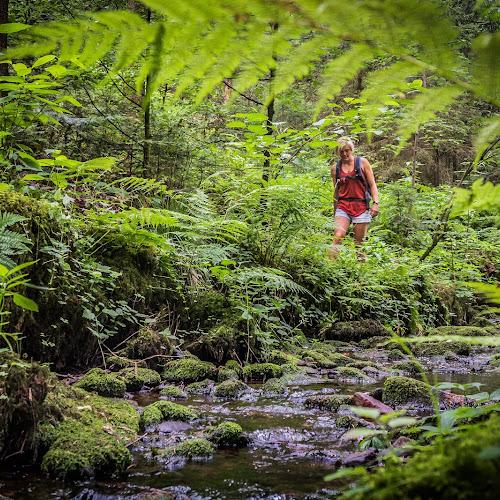 Wasser- Wald- und Wiesenpfad