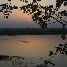 by Bhaskar Bhattacharya - Novices Only Landscapes