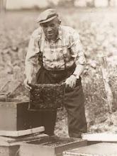 Photo: Rieks Hollander met zijn bijen