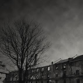 by Igor Mandic - Black & White Buildings & Architecture