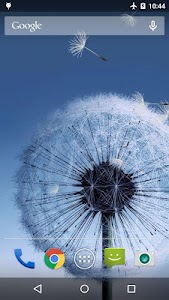 Dandelion Live Wallpaper v1.5.7