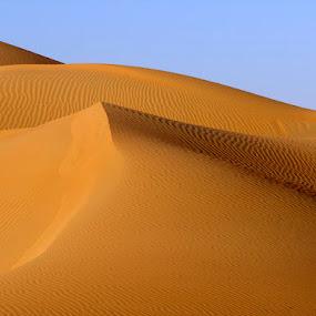 Empty Quarter by Andrea Willmore - Landscapes Deserts ( curve, sand, patterns, desert, empty quarter, liwa, landscape )