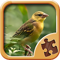 Birds Puzzle Games icon