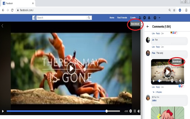 Blob Video Downloader