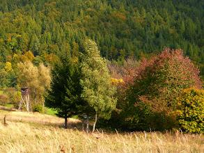 Photo: Barvy podzimu