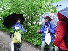 Photo: Kräuterwanderung bei Regen
