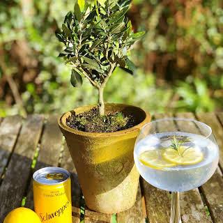 Rosemary and Lemon Botanical Gin.