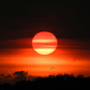DSCN1977-Sun set.jpg