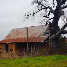 -------The old Farm House------- by Neal Hatcher - Buildings & Architecture Decaying & Abandoned