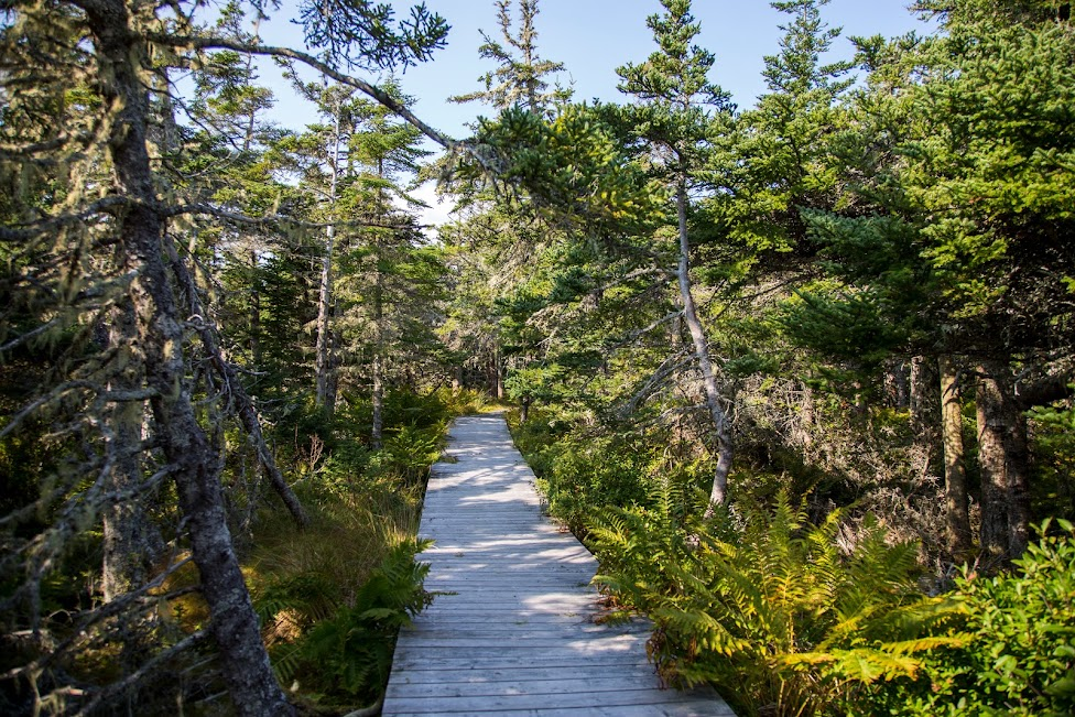 Park Narodowy Kejimkujik National Park Seaside