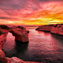by Artur Jose - Landscapes Waterscapes (  )