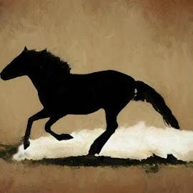 Run in the dust by Gaylord Mink - Digital Art Animals ( horse, animal, dust, digital art )