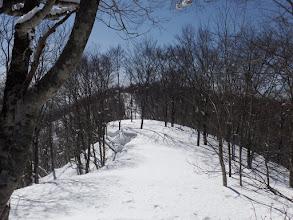 稜線沿いは良い道に