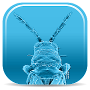 App Icon for Pest Thrips of East Africa App in Czech Republic Google Play Store