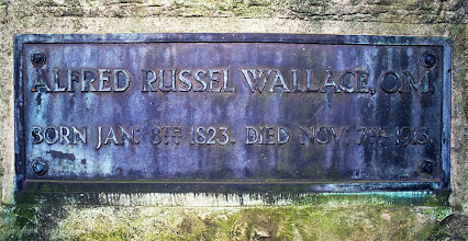 Photo: Original plaque on base of monument on Wallace's grave. Copyright George Beccaloni