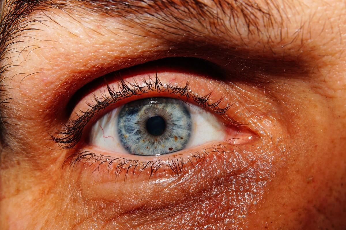 hombre persona rojo color humano azul cerca labio arruga ceja boca pestaña de cerca cuerpo humano cara nariz mejilla iris ojo cabeza piel Organo pestañas Fotografía macro frente extensiones de pestañas