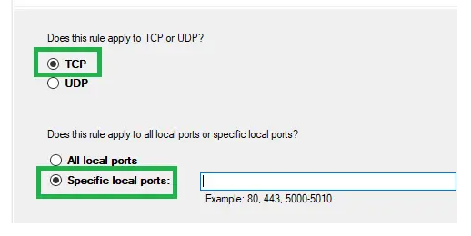 Enable TCP & Specific Local Ports Options