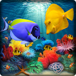 Fish Live Wallpaper 3D: Aquarium Phone Background